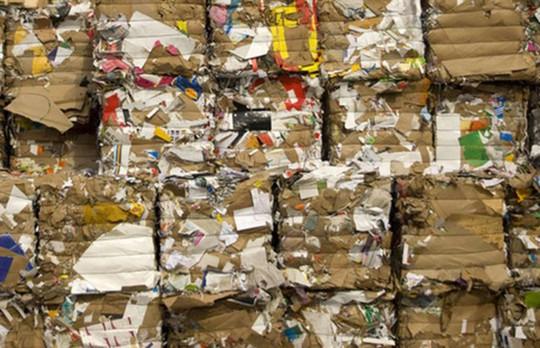 """Những tỷ phú biến rác thành """"vàng"""" trên thế giới - Ảnh 2."""