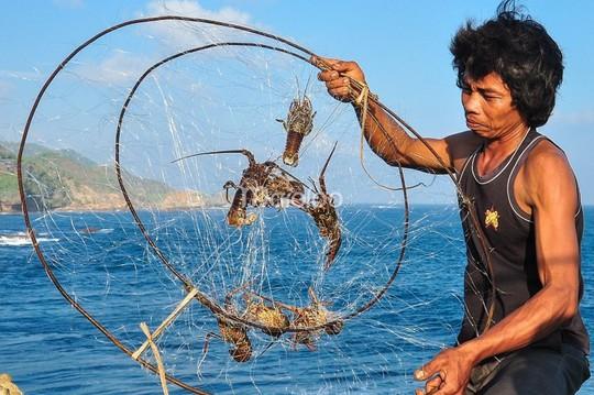 Cáp treo vượt biển Timang: Yếu bóng vía nên tránh xa! - Ảnh 5.