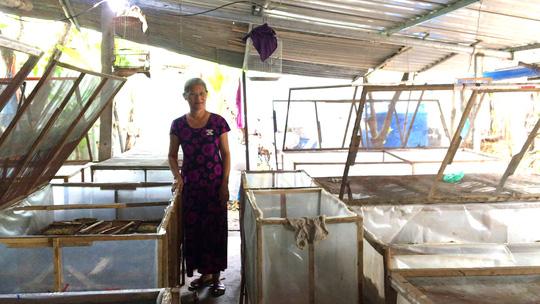 Cô giáo về hưu mỗi tháng cung cấp 500 kg dế ra thị trường - Ảnh 1.