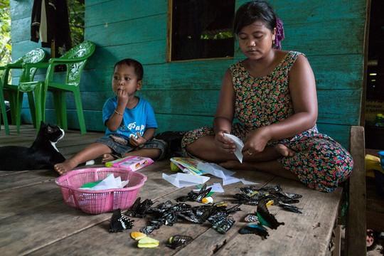 Những người săn bướm bí ẩn ở Indonesia - Ảnh 9.