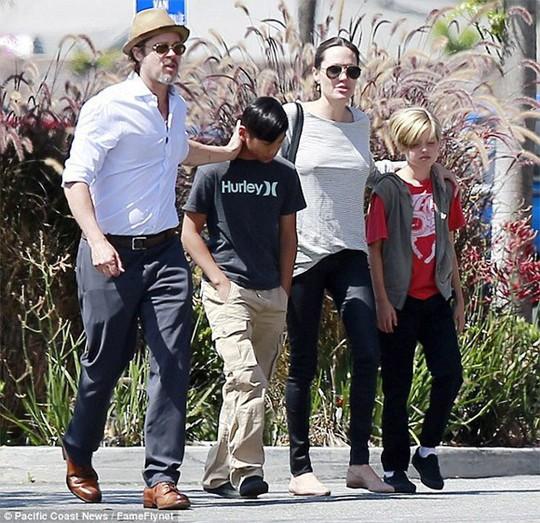 Cả sáu người con đều muốn sống cùng Brad Pitt? - Ảnh 1.