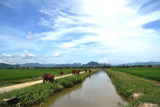 Nhiều khoản phí lạ ở Quảng Bình: Trâu, bò, vịt, máy cày,… ra đồng phải đóng phí - Ảnh 2.