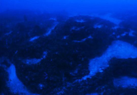 Phát hiện tàu của người ngoài hành tinh dưới Tam giác quỷ Bermuda? - Ảnh 5.
