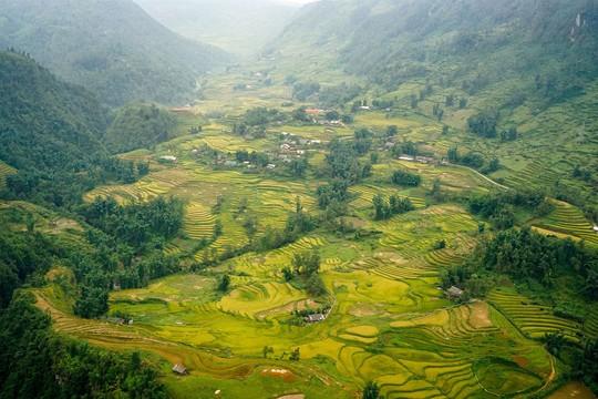 Lúa đã chín vàng khắp thung lũng Mường Hoa, xách ba lô lên và đi thôi! - Ảnh 2.