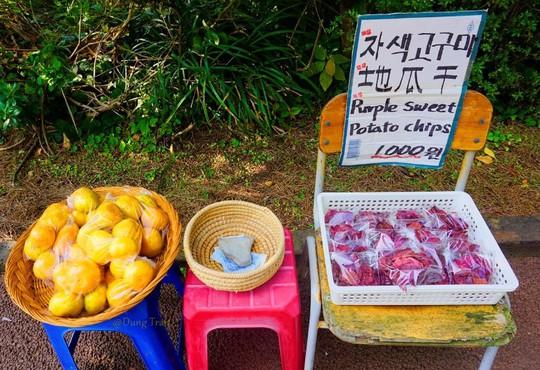 12 trải nghiệm kỳ thú tại đảo Jeju - Ảnh 12.