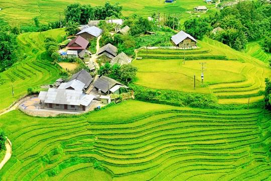 Lúa đã chín vàng khắp thung lũng Mường Hoa, xách ba lô lên và đi thôi! - Ảnh 4.