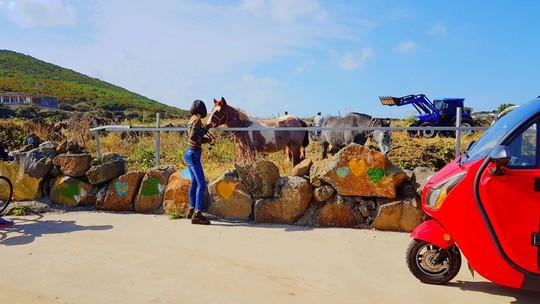 12 trải nghiệm kỳ thú tại đảo Jeju - Ảnh 5.