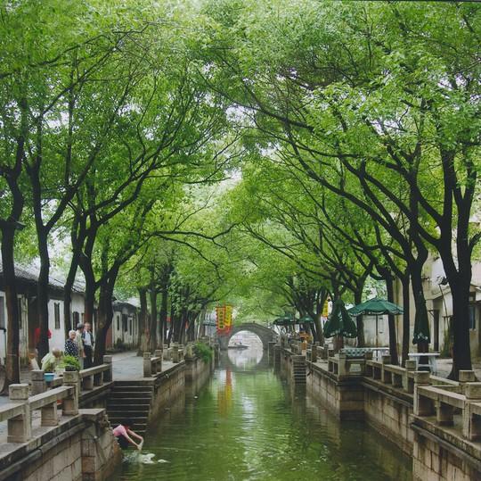 10 cổ trấn Trung Quốc đẹp như phim phải đi thu này - Ảnh 7.