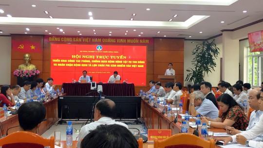 Nguy cơ dịch tả lợn châu Phi xâm nhiễm vào Việt Nam rất cao - Ảnh 2.