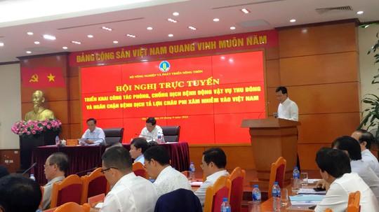 Nguy cơ dịch tả lợn châu Phi xâm nhiễm vào Việt Nam rất cao - Ảnh 3.