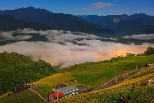 Chiêm ngưỡng xứ sở hoa kim châm đẹp như tranh vẽ ở Đài Loan - Ảnh 5.