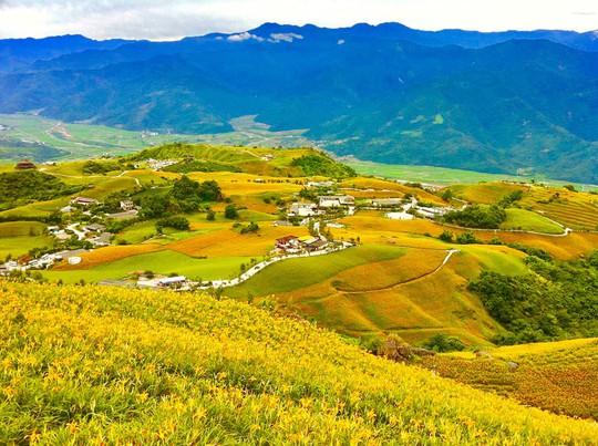 Chiêm ngưỡng xứ sở hoa kim châm đẹp như tranh vẽ ở Đài Loan - Ảnh 10.