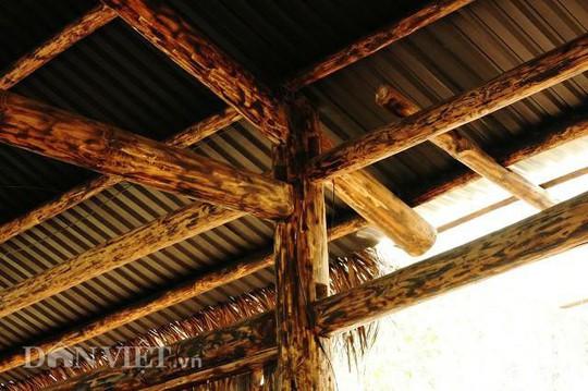 Dựng nhà gỗ lớn giữa rừng, không cần đến đinh - Ảnh 3.