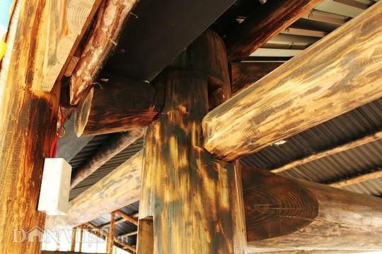 Dựng nhà gỗ lớn giữa rừng, không cần đến đinh - Ảnh 4.