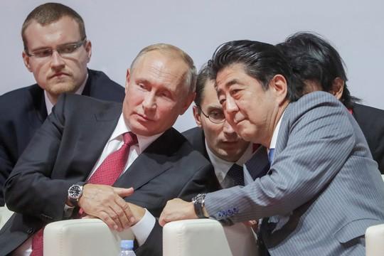 Ẩn ý lời đề nghị của ông Putin - Ảnh 1.