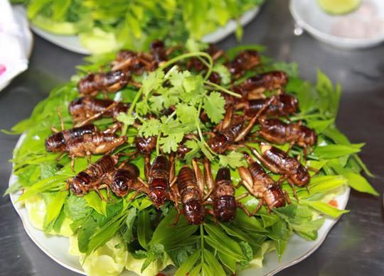 Dế chiên nước mắm ở Long Khánh ăn là ghiền - Ảnh 1.