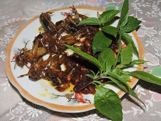 Dế chiên nước mắm ở Long Khánh ăn là ghiền - Ảnh 4.