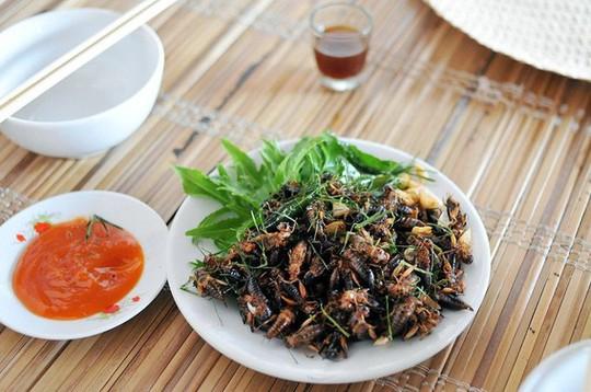 Dế chiên nước mắm ở Long Khánh ăn là ghiền - Ảnh 6.