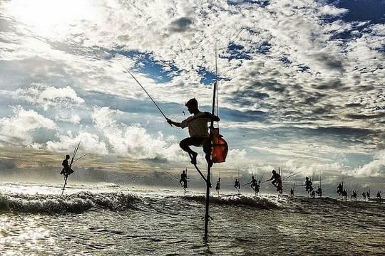 Nghệ thuật câu cá trên cọc kheo của các ngư dân Sri Lanka - Ảnh 4.