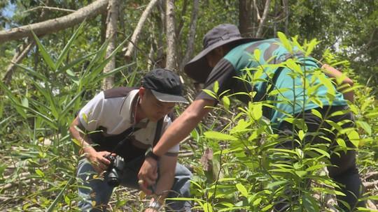 Khám nghiệm hiện trường vụ Tàn sát rừng phòng hộ - Ảnh 2.