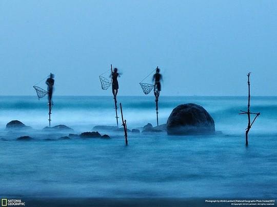 Nghệ thuật câu cá trên cọc kheo của các ngư dân Sri Lanka - Ảnh 1.