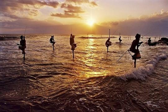 Nghệ thuật câu cá trên cọc kheo của các ngư dân Sri Lanka - Ảnh 7.