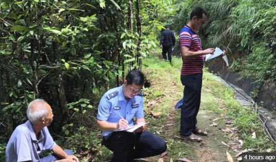 Bé gái 22 tháng tuổi sống sót sau 4 ngày lạc nơi rừng núi - Ảnh 2.