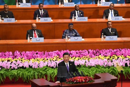 Ông Tập trấn an châu Phi về món quà khó cưỡng của Trung Quốc - Ảnh 1.