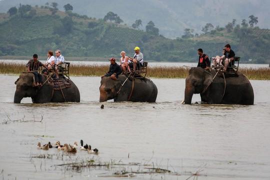 Cưỡi voi, chèo thuyền độc mộc trên hồ nước ngọt lớn nhất Tây Nguyên - Ảnh 4.