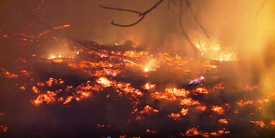 Hàng trăm người trắng đêm chữa cháy rừng ở Quảng Bình - Ảnh 1.