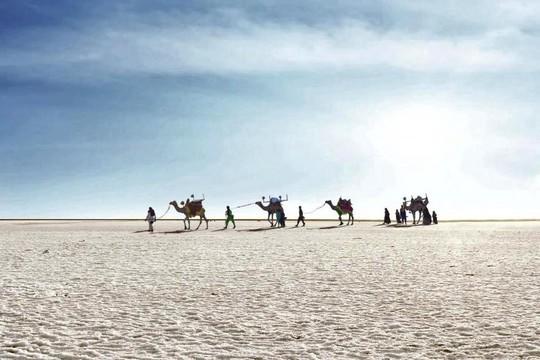 Hình ảnh siêu thực ở sa mạc muối khổng lồ của Ấn Độ - Ảnh 1.