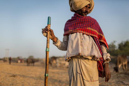 Hình ảnh siêu thực ở sa mạc muối khổng lồ của Ấn Độ - Ảnh 9.