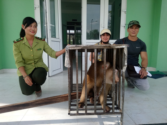 Nhóm thanh niên góp tiền giải cứu cá thể khỉ quý hiếm - Ảnh 1.