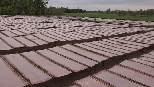 Bí quyết của làng nghề bánh tráng trăm năm phục vụ Tết - Ảnh 8.