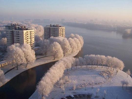 Đẹp nao lòng mùa đông ở Hà Lan - Ảnh 1.