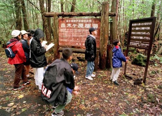Khu rừng rợn tóc gáy ở Nhật Bản - Ảnh 1.