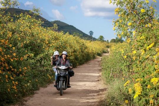 Những con đường ở Tây Nguyên đẹp như cảnh trên phim Hàn - Ảnh 2.