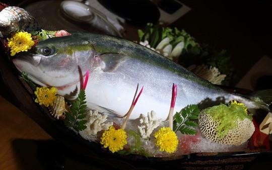 Cá năm mới Nhật: Giá tiền triệu - Ảnh 1.