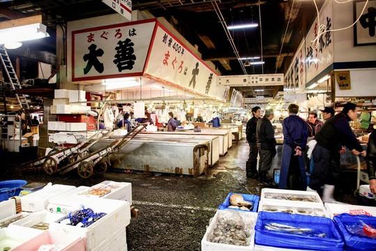 Chợ cá lớn nhất thế giới ở Nhật Bản - nơi bán những con cá triệu USD - Ảnh 2.