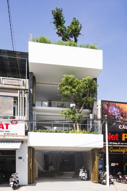 Ngôi nhà đẹp ở Nha Trang lên trang nhất báo Tây - Ảnh 2.