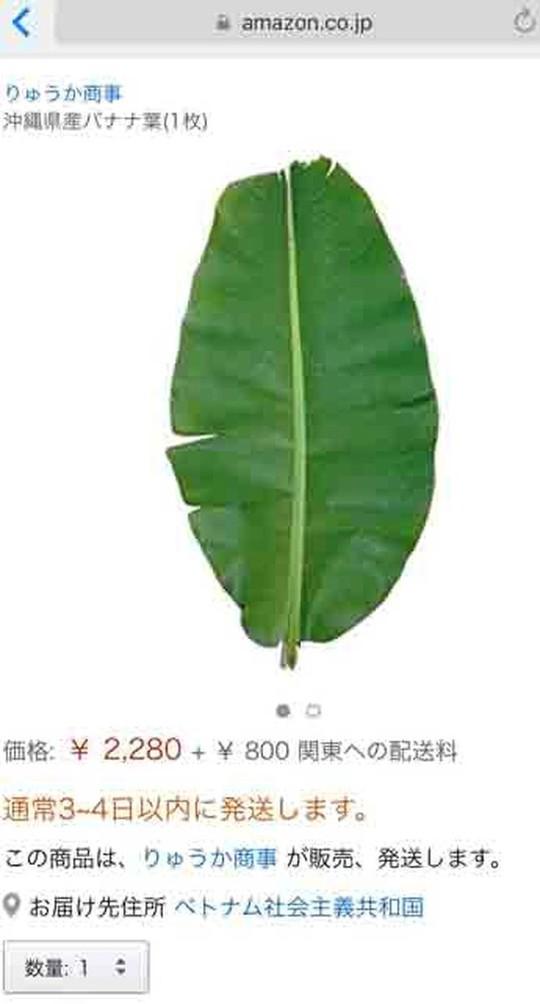 Người Việt phải trả 500.000 đồng mỗi chiếc lá chuối ở Nhật - Ảnh 1.