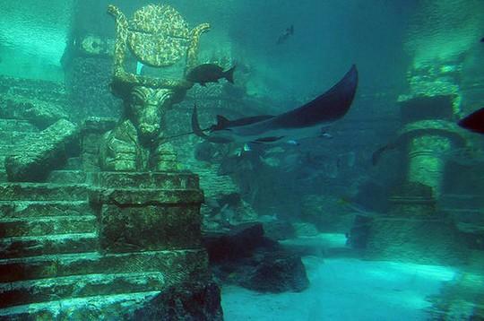 7 thành phố dưới nước bạn nên ghé thăm một lần trong đời - Ảnh 2.
