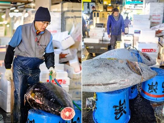 Chợ cá lớn nhất thế giới ở Nhật Bản - nơi bán những con cá triệu USD - Ảnh 11.