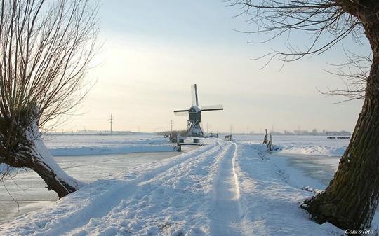 Đẹp nao lòng mùa đông ở Hà Lan - Ảnh 12.