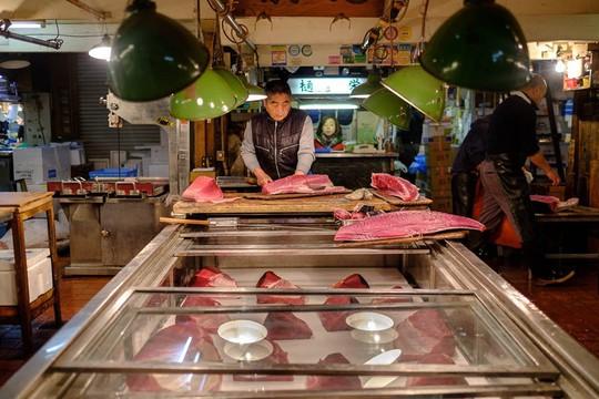 Chợ cá lớn nhất thế giới ở Nhật Bản - nơi bán những con cá triệu USD - Ảnh 12.