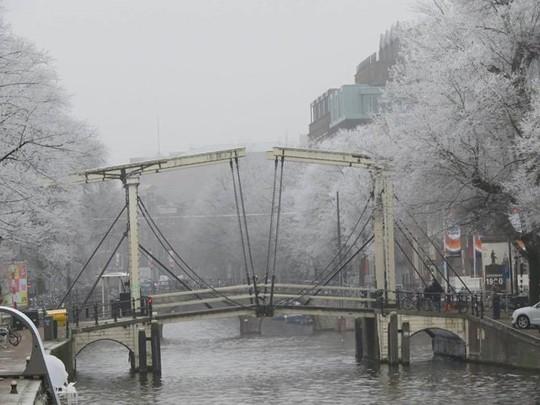 Đẹp nao lòng mùa đông ở Hà Lan - Ảnh 3.