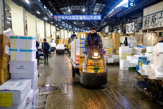 Chợ cá lớn nhất thế giới ở Nhật Bản - nơi bán những con cá triệu USD - Ảnh 3.