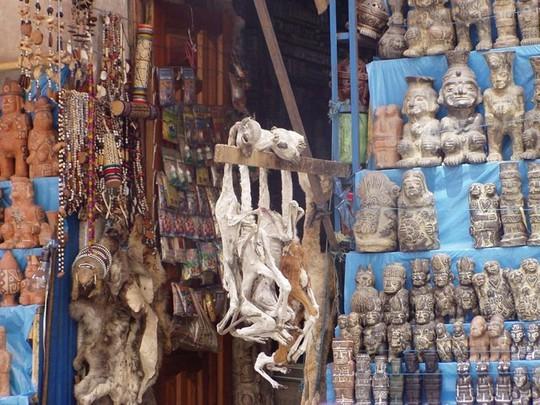 Bí ẩn trong khu chợ bùa ngải ma thuật lớn nhất thế giới - Ảnh 3.