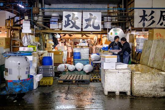 Chợ cá lớn nhất thế giới ở Nhật Bản - nơi bán những con cá triệu USD - Ảnh 4.