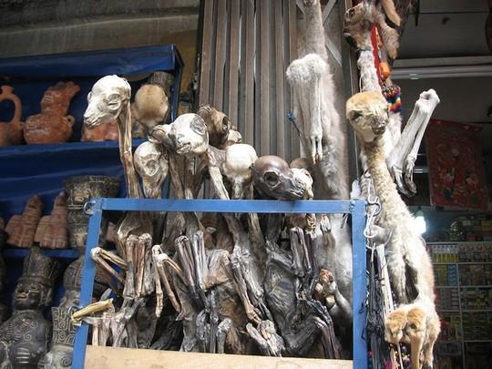 Bí ẩn trong khu chợ bùa ngải ma thuật lớn nhất thế giới - Ảnh 4.